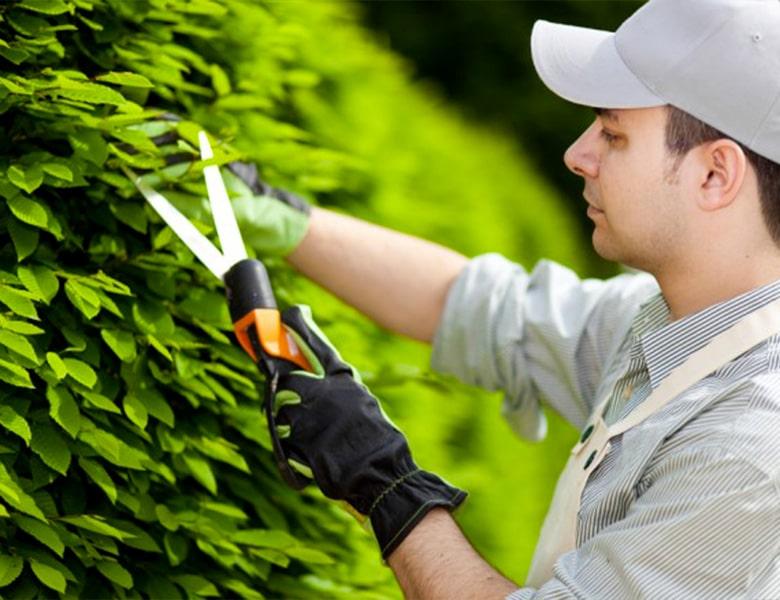 giardiniere1